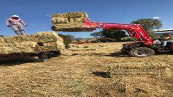kuzeytek_traktor_saban_balya_sis-(28)